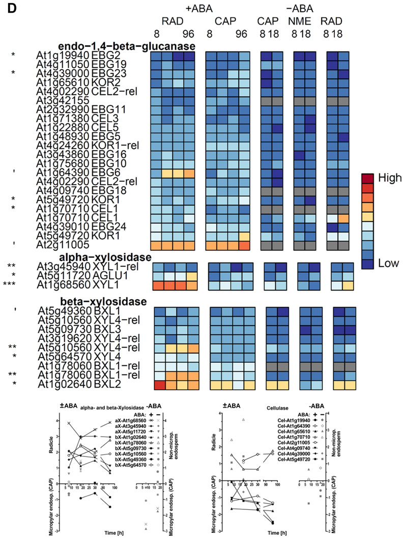 Cellulases and xylosidases heat map