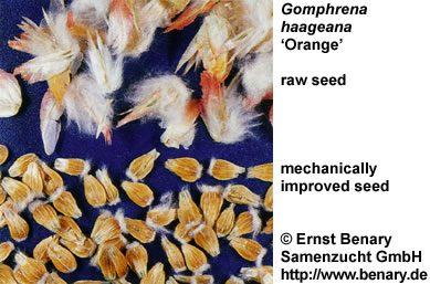 seed enhancement